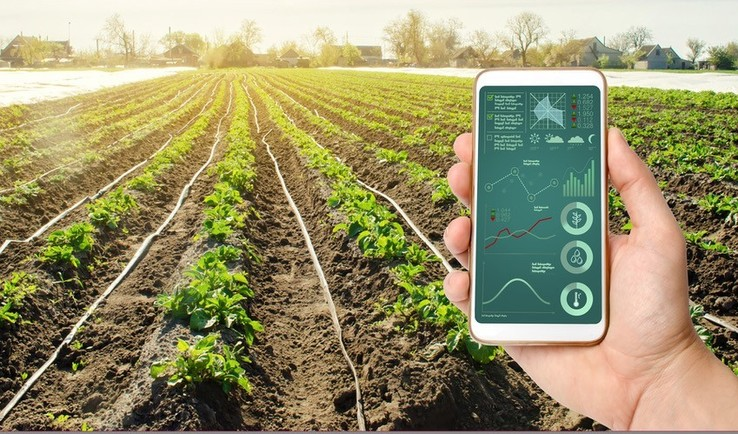 Utilising artificial intelligence (AI) for effective decision making in agriculture